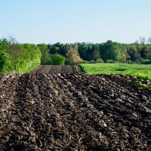 Was ist ein Mutterboden - Definition