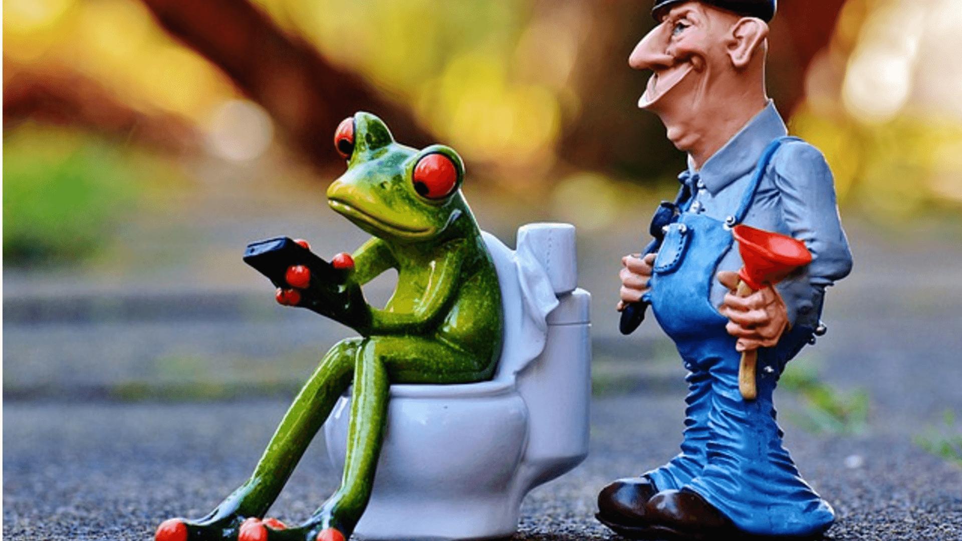 Wie soll ich eine Toilettenspülung reparieren