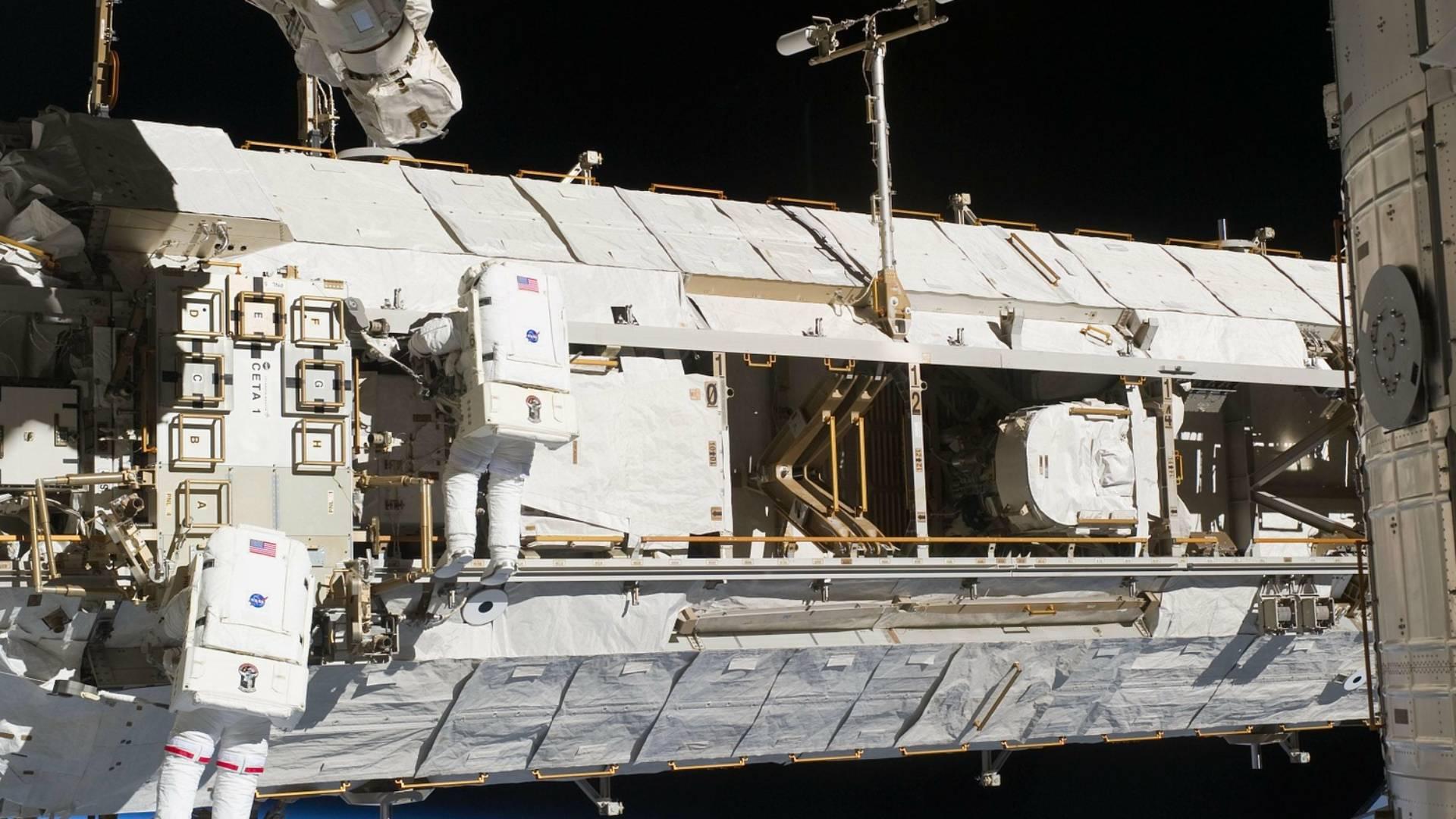 Eine neues Bakterium in der ISS entdeckt