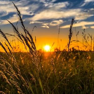 Wann geht die Sonne im Osten auf?