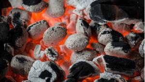 Die Entstehung von Kohle und ihre Arten