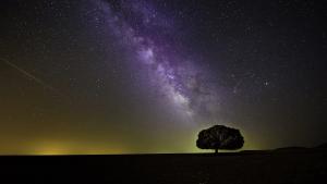 Viele Sterne in der Milchstraße