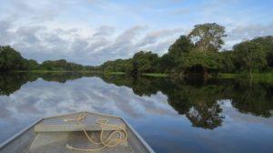 amazonas regenwald letzte bastion 300x168 - Brasiliens Amazonas-Regenwald emittiert immer mehr CO2