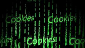 Browserverlauf und Cookies im Test und Vergleich