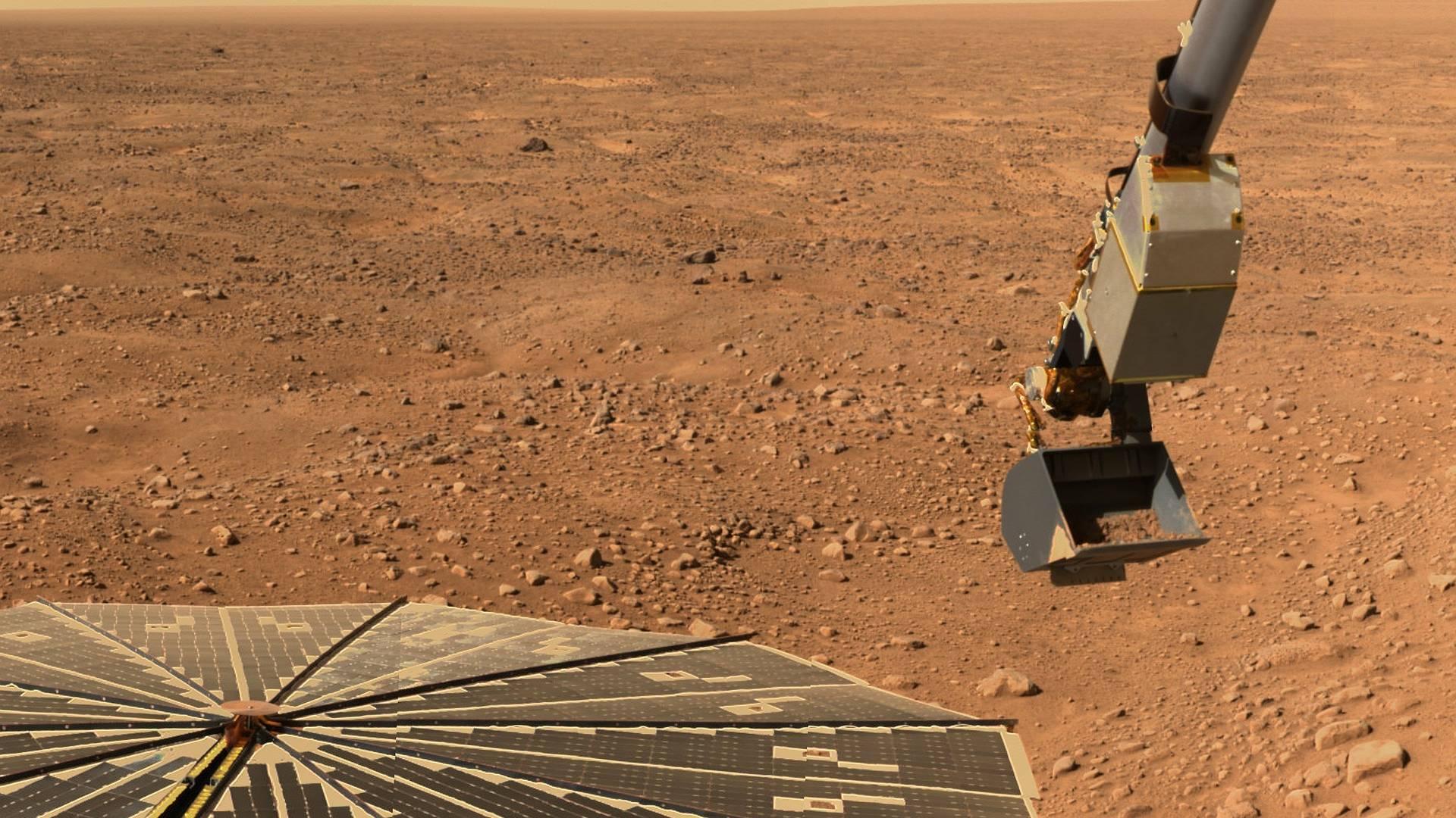 Gibt es wirklich Pilze auf dem Mars
