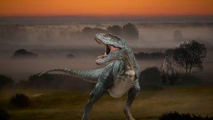 das raubtier tyrannosaurus 300x169 - Tyrannosauriden: kein Platz für andere Raubtiere!