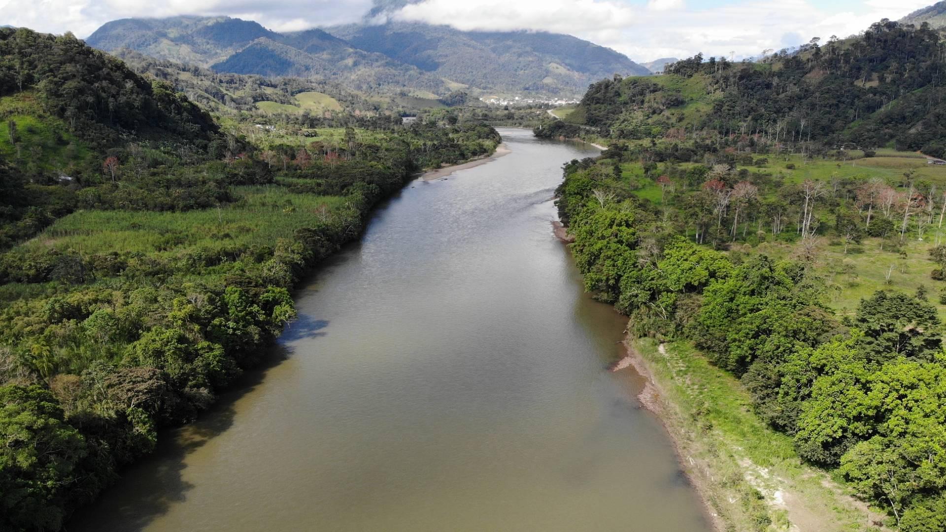 Der Amazonas-Regenwald ist keine Kohlenstoffsenke mehr