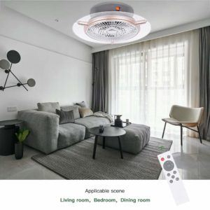 Le ventilateur plafonnier arrive chez vous