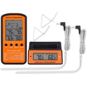 Quels sont les inconvénients du thermomètre?