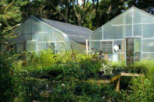Quels sont les avantages et domaines d'application des serres de jardin ?