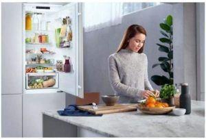 Quels sont les Domaines d'application d'un réfrigérateur encastrable?