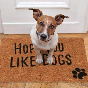 Quels sont les avis sur Relaxdays Paillasson Hope You Like Dogs ?