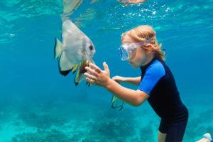 Notes des experts sur les masques de plongée dans un comparatif