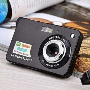 Les avantages d'un grand capteur pour appareil photo bridge