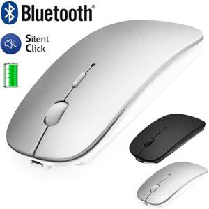 Quels sont les avantages et applications des souris ?