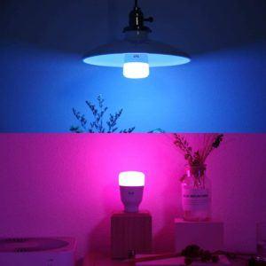 Le type d'ampoule connectée classique